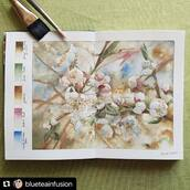 #Repost @blueteainfusion with @make_repost ・・・ Florals are quite a tricky subject to paint in watercolors, but there's no chance of improving without practice. Also, sometimes a little bit of experimentation can be very rewarding.  #cherryblossom #springflowers #whiteflowers #watercolorpainting #romanszmalaquarius #kovalsketchbooks